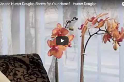 Why Choose Hunter Douglas Sheers
