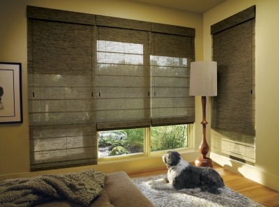 Den Window Shades