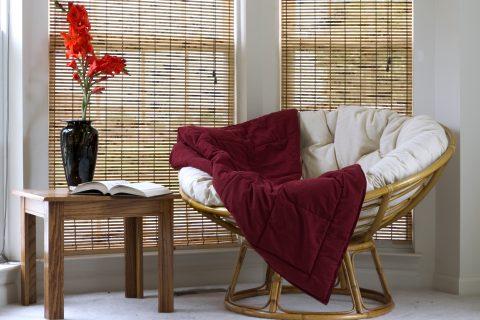 Interior with Papasan Chair